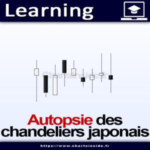 Atelier Autopsie des chandeliers japonais
